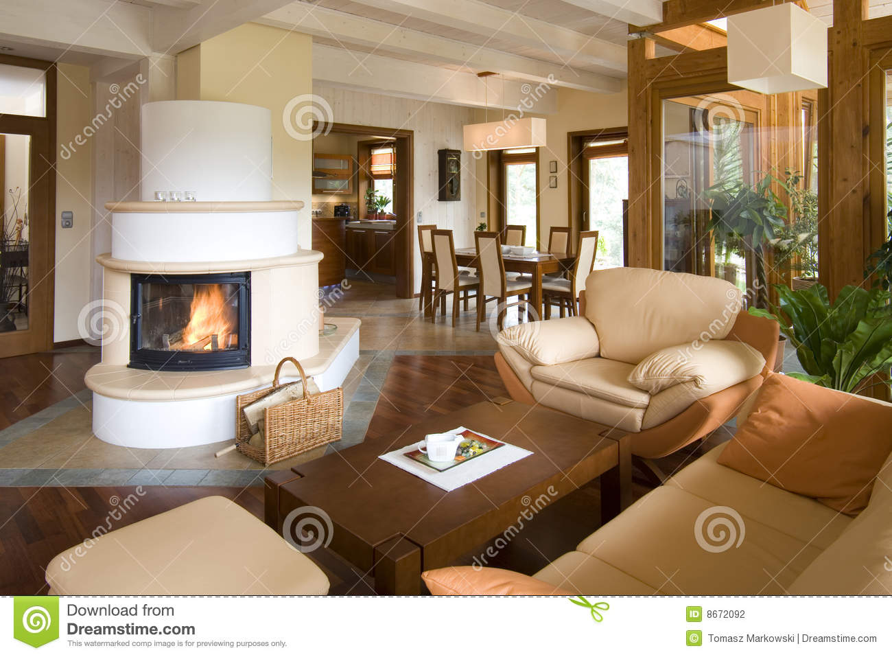 Stylish Modern Living Room With Fireplace Stock