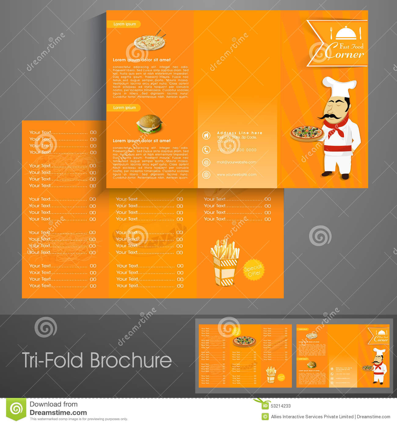 stylish tri fold brochure  template or flyer for