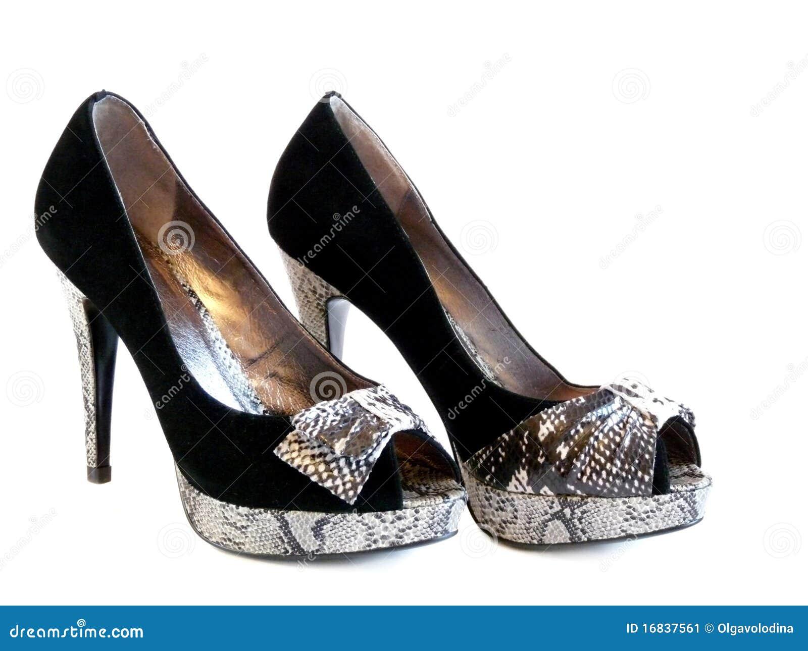 Stylish Women's Shoes Isolated Stock Image - Image: 16837561