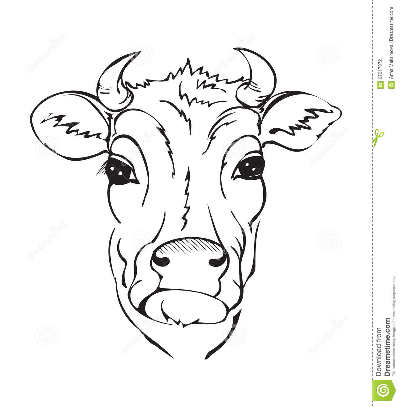 Line Drawing Cow Face : Stylized black and white cow head stock vector