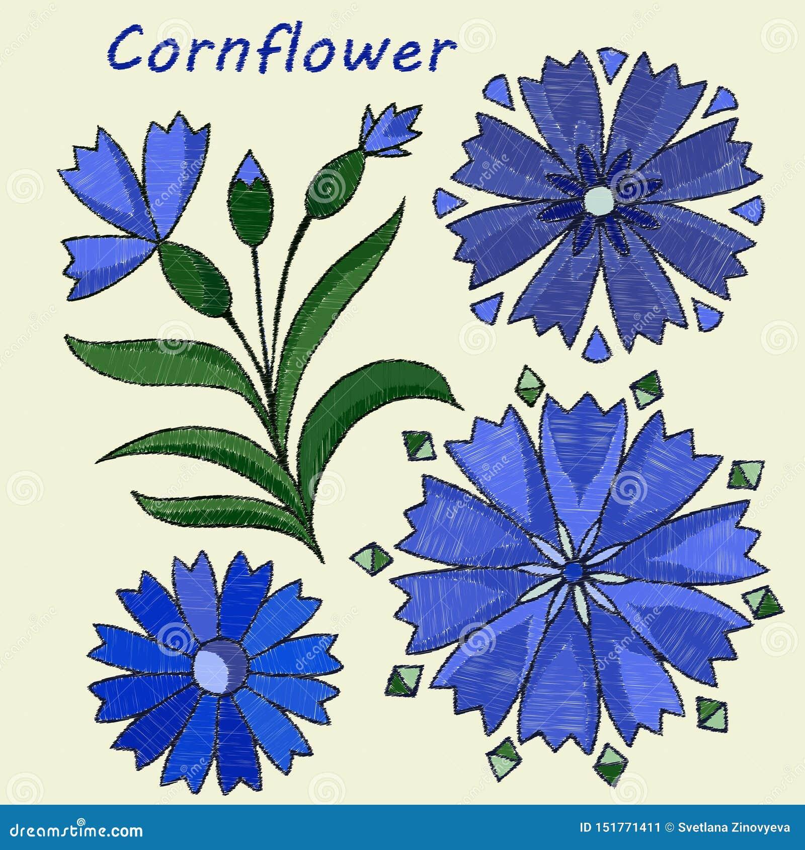 Stylized, embroidered elements, cornflower flower. Vector