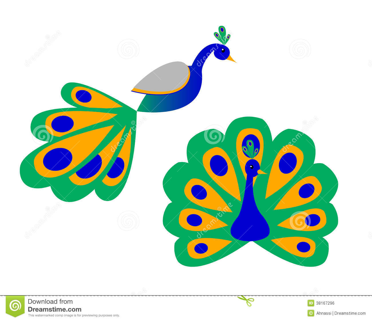 a stylized peacock front and side view stock