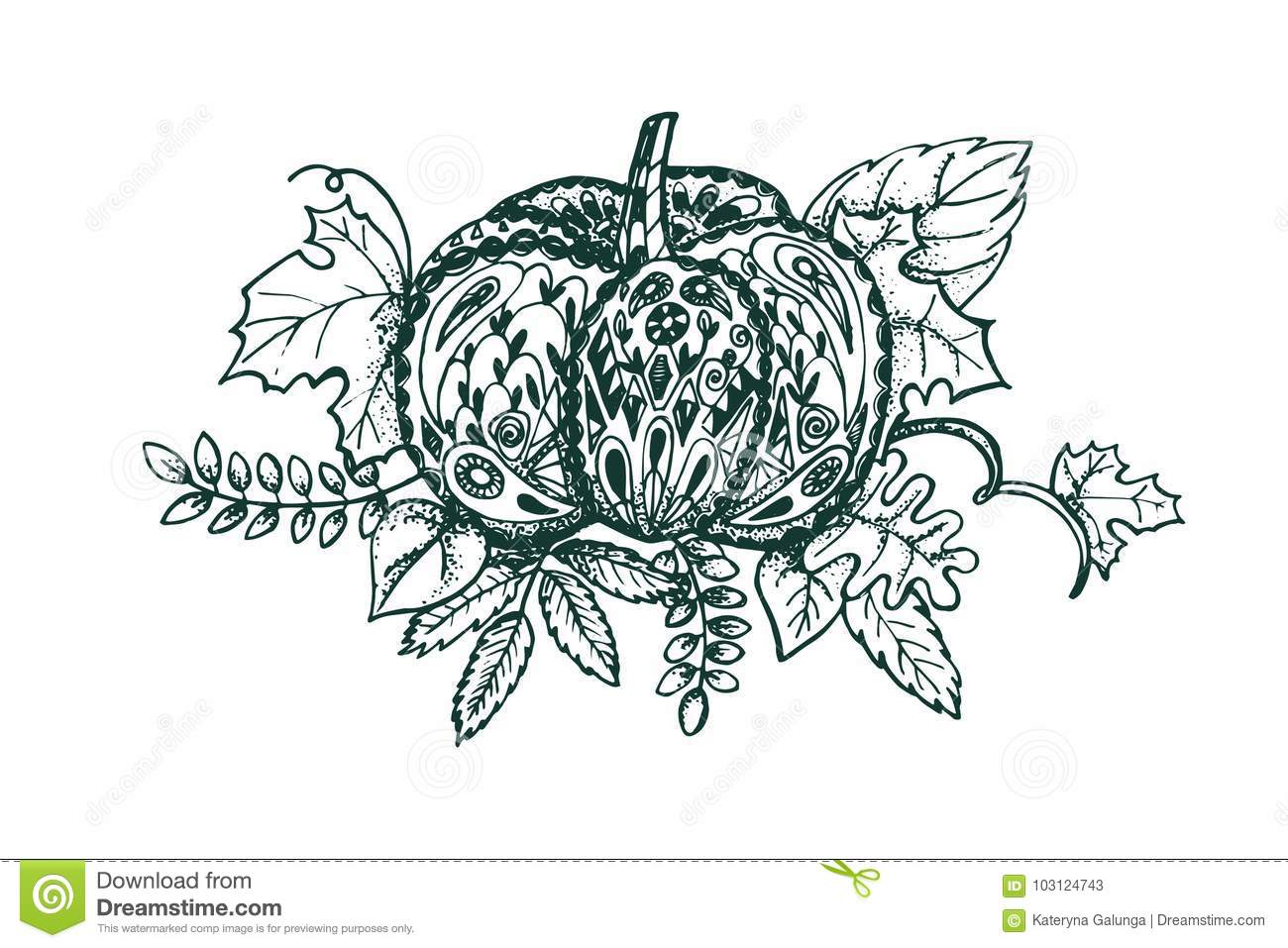 Stylized Pumpkin And Leaves Isolated On White Background. Stock ...