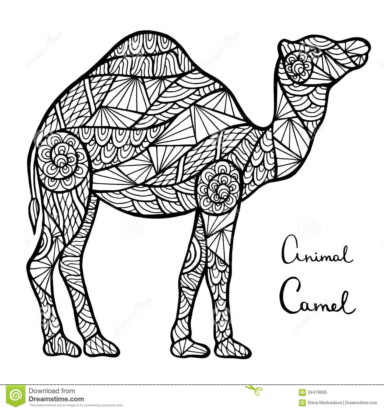 Stylized Vector Camel Zentangle Isolated On White Background Stock Image 59478695