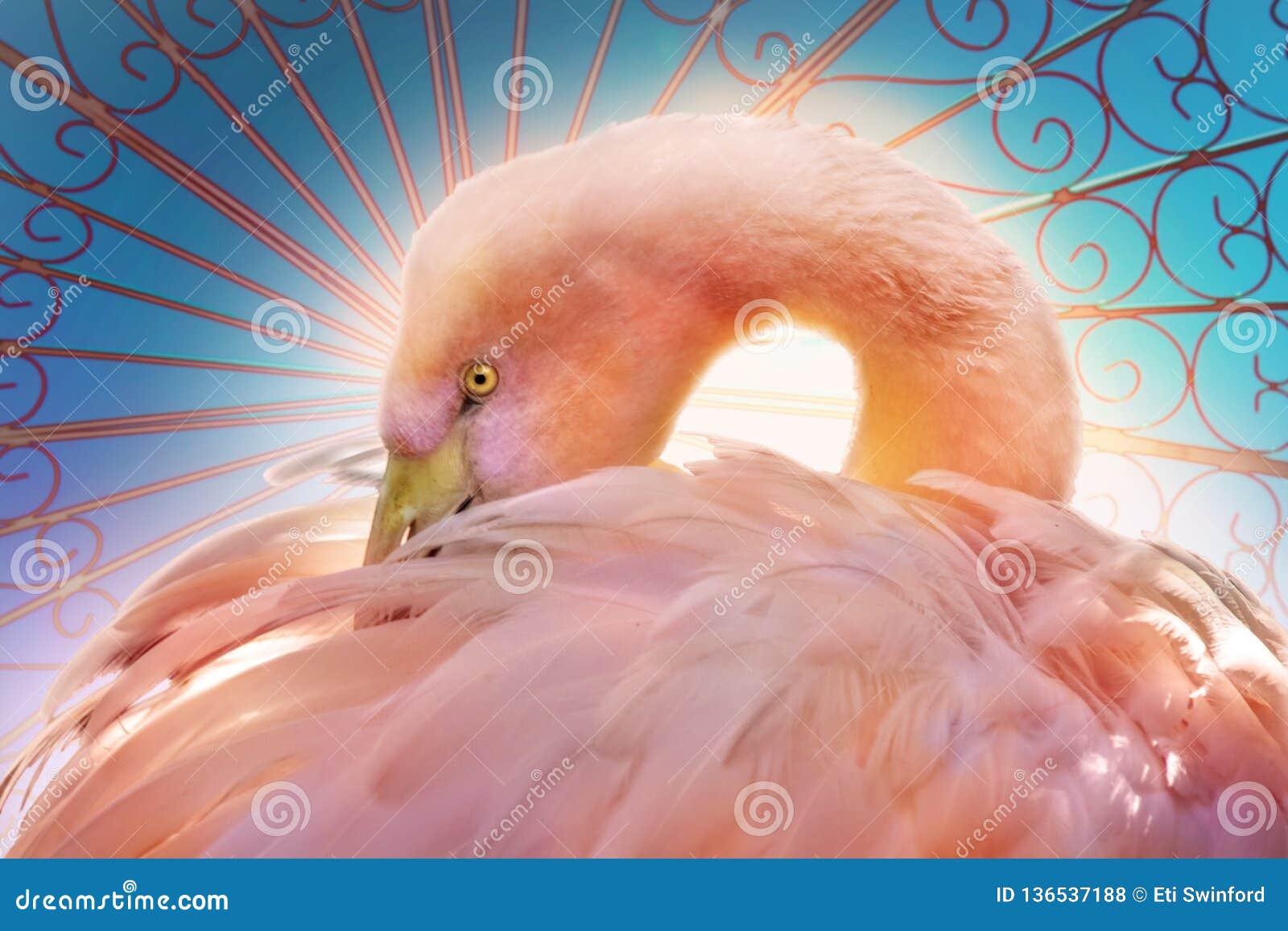 Stylizowanego flaminga złożona sztuka