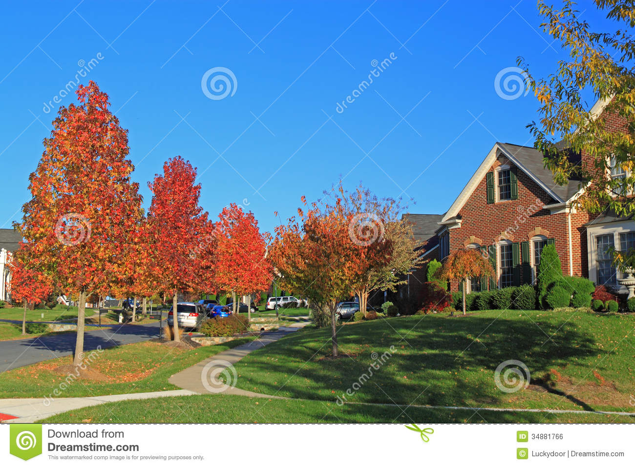 Autumn residential area stock photo image of home area for Colorful tree house