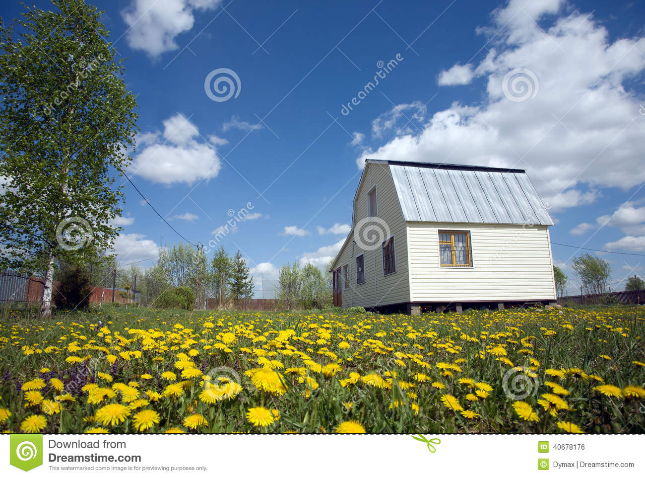 Suburban House Covered With Siding On Lawn With Yellow Dandelions Stock Photo Image Of Summer