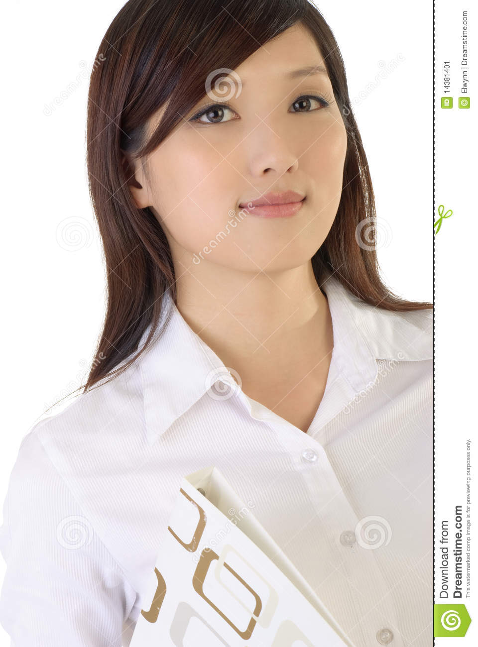 Successful Asian Business Woman Stock Image - Image: 14381401