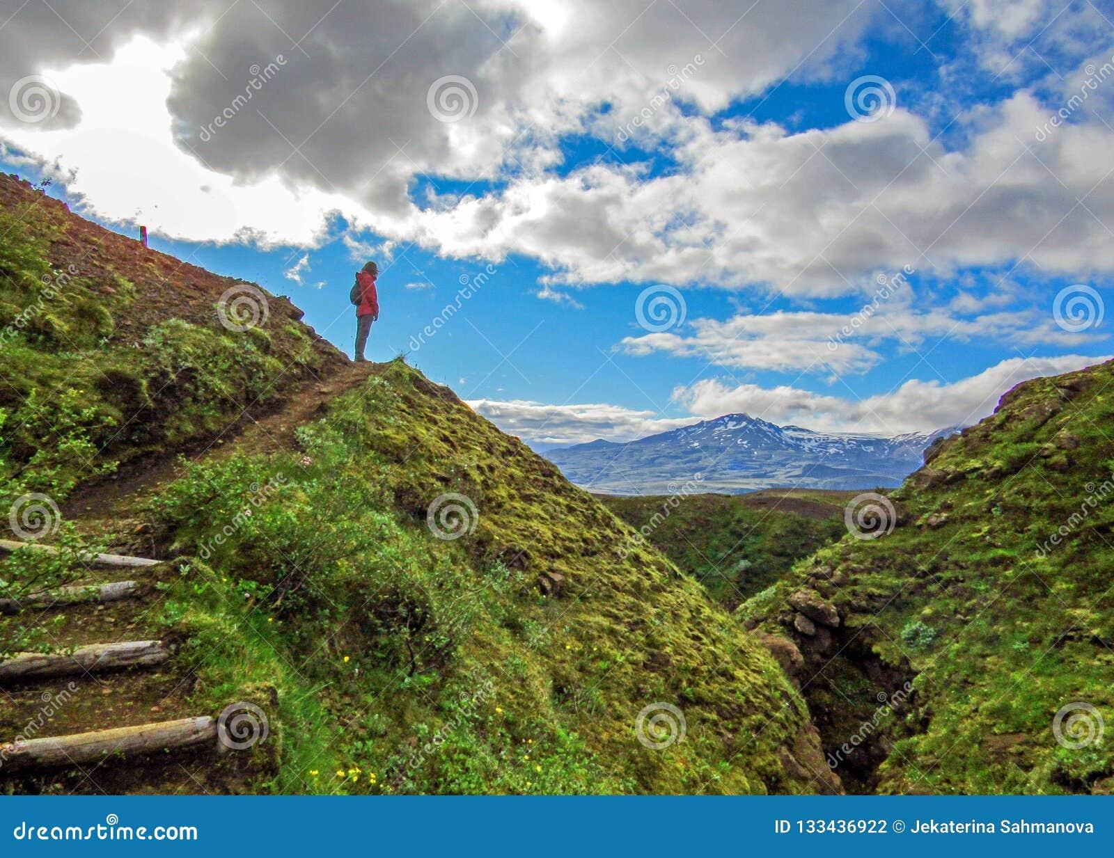 Succesvolle wandelaarvrouw die zich alleen in de wildernis op de bergbovenkant bevinden en aan nieuwe toneel, adembenemende beste