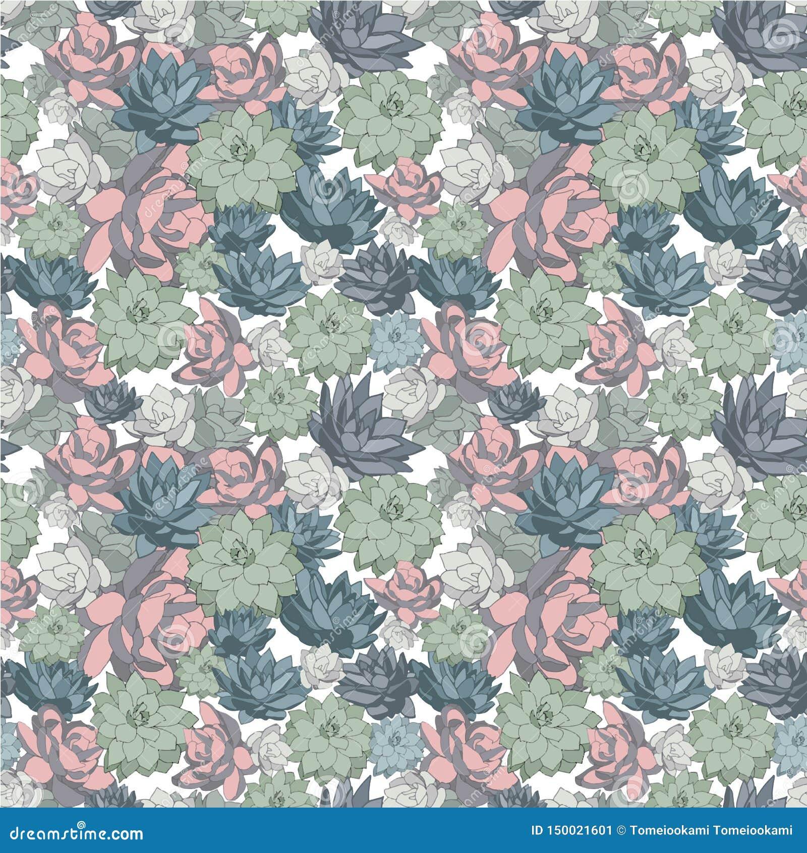 Succulent σύνολο άνευ ραφής διανυσματικών σχεδίων στα χρώματα κρητιδογραφιών