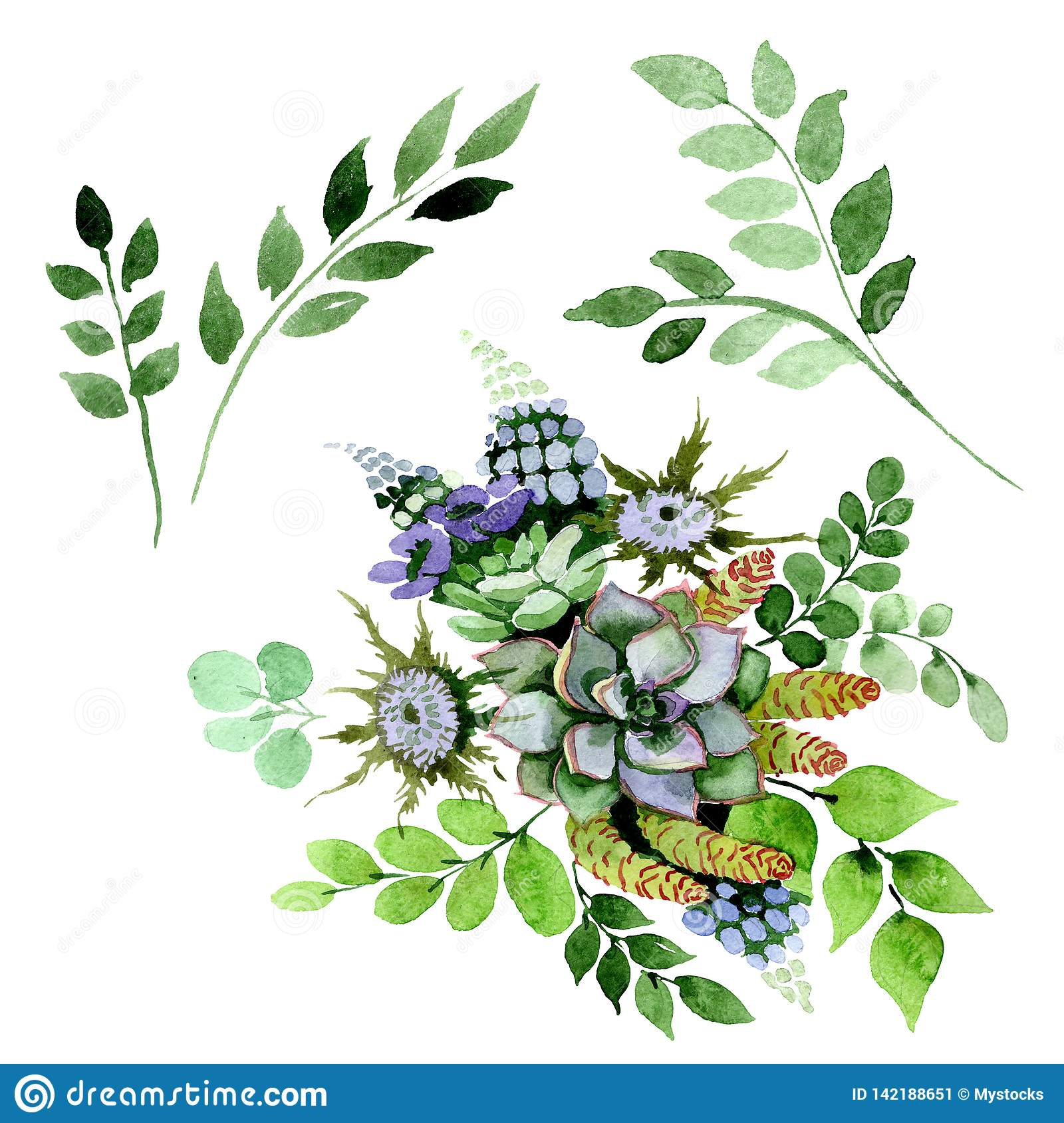 Succulent Bouquet Floral Botanical Flowers Watercolor Background Illustration Set Isolated Succulents Element Stock Illustration Illustration Of Isolated Hand 142188651