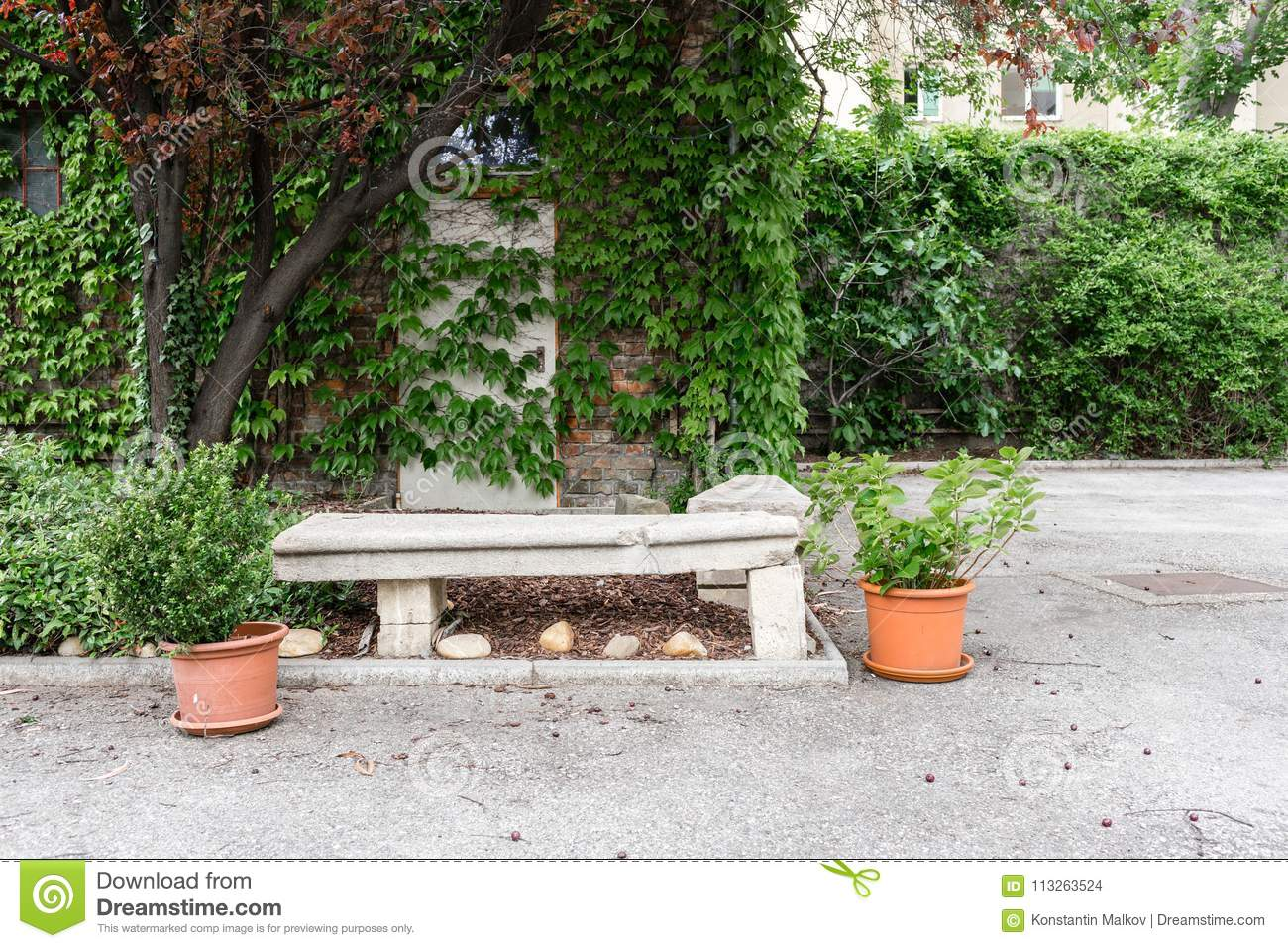 Green Plants In Pots Outdoor On The Summer Patio Small Townhouse