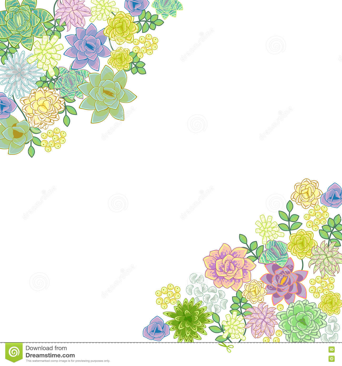 Succulent Garden Border Card Design Stock Vector Image 70713852