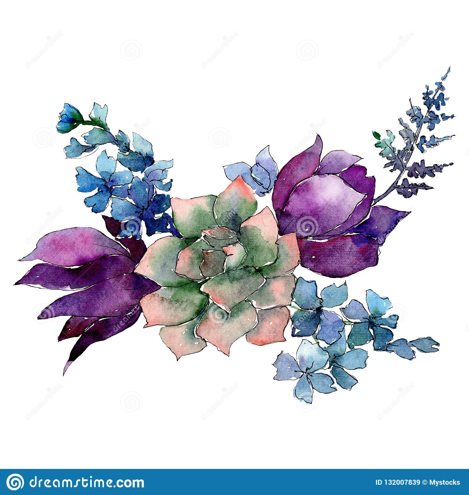 Succulent With Purple And Blue Flowers Isolated Bouquet Illustration Element Watercolor Background Illustration Set Stock Illustration Illustration Of Purple Drawn 132007839