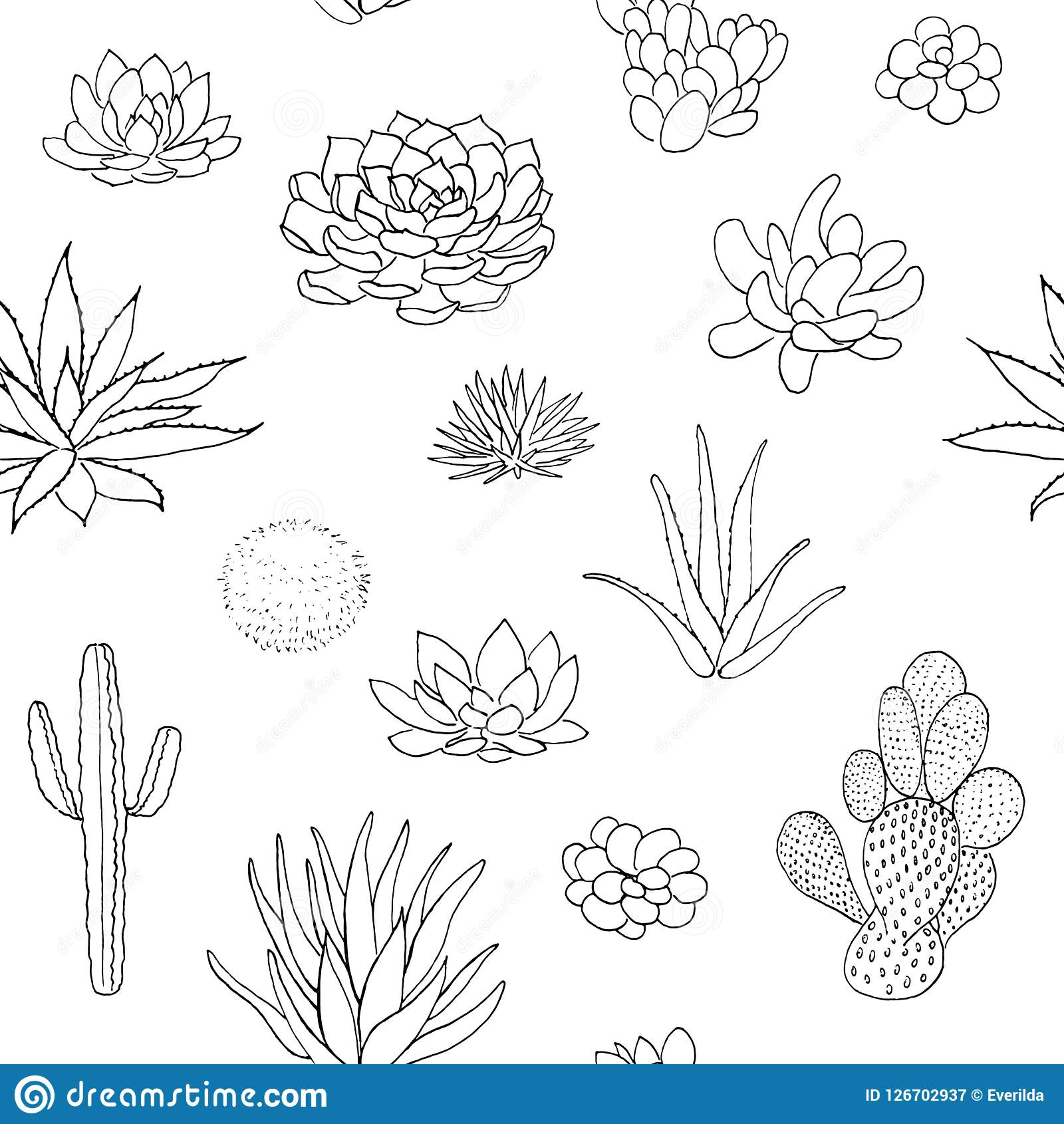 Succulent Seamless Pattern Hand Drawn Vector Illustration Outline Sketch Chalk Style Stock Illustration Illustration Of Drawing Agave 126702937