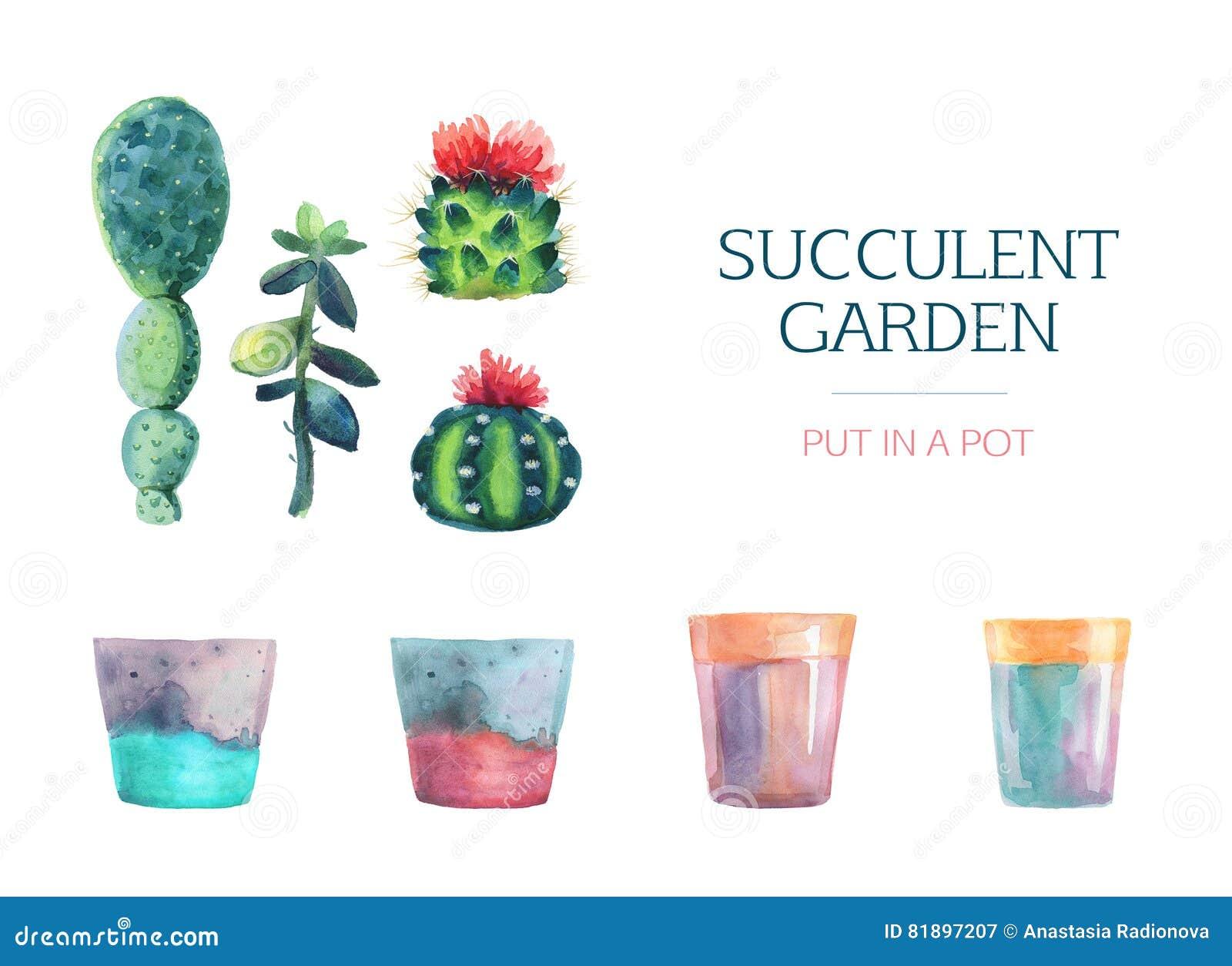 Succulente reeks van waterverf en een bloempot