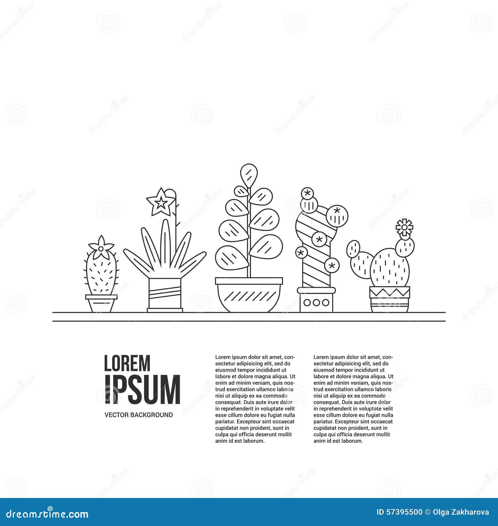 Succulents en Tekst