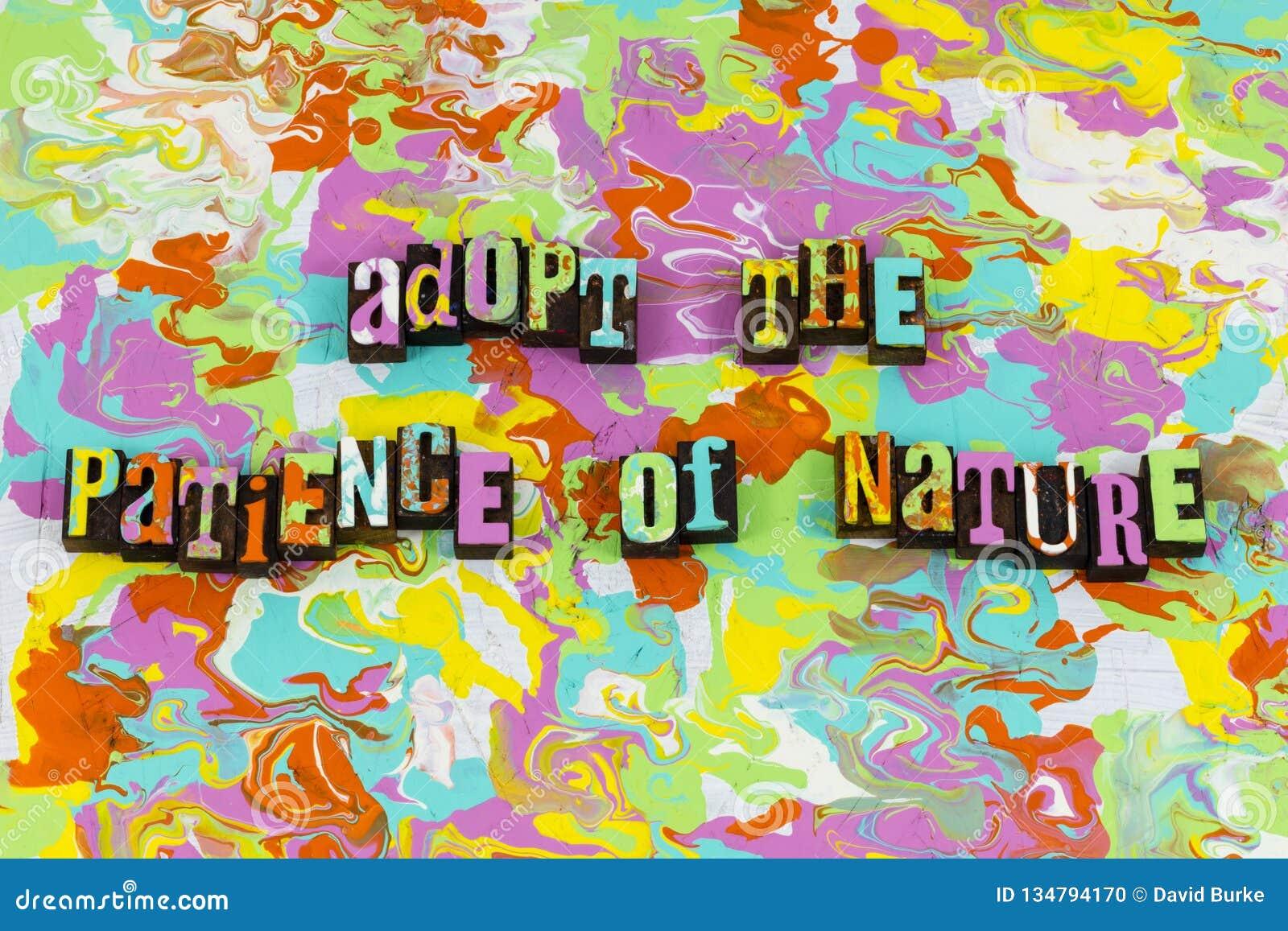 Sucesso do processo do ambiente da natureza da paciência