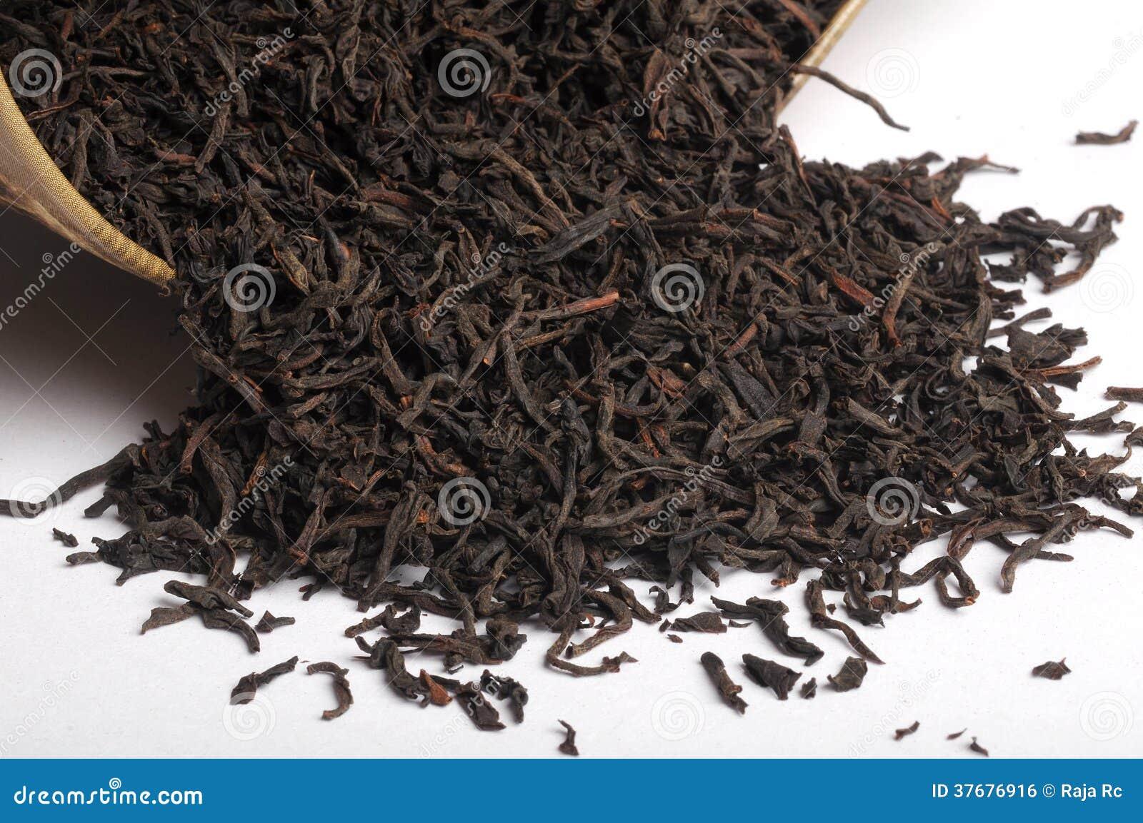 Suchy herbaciany liść