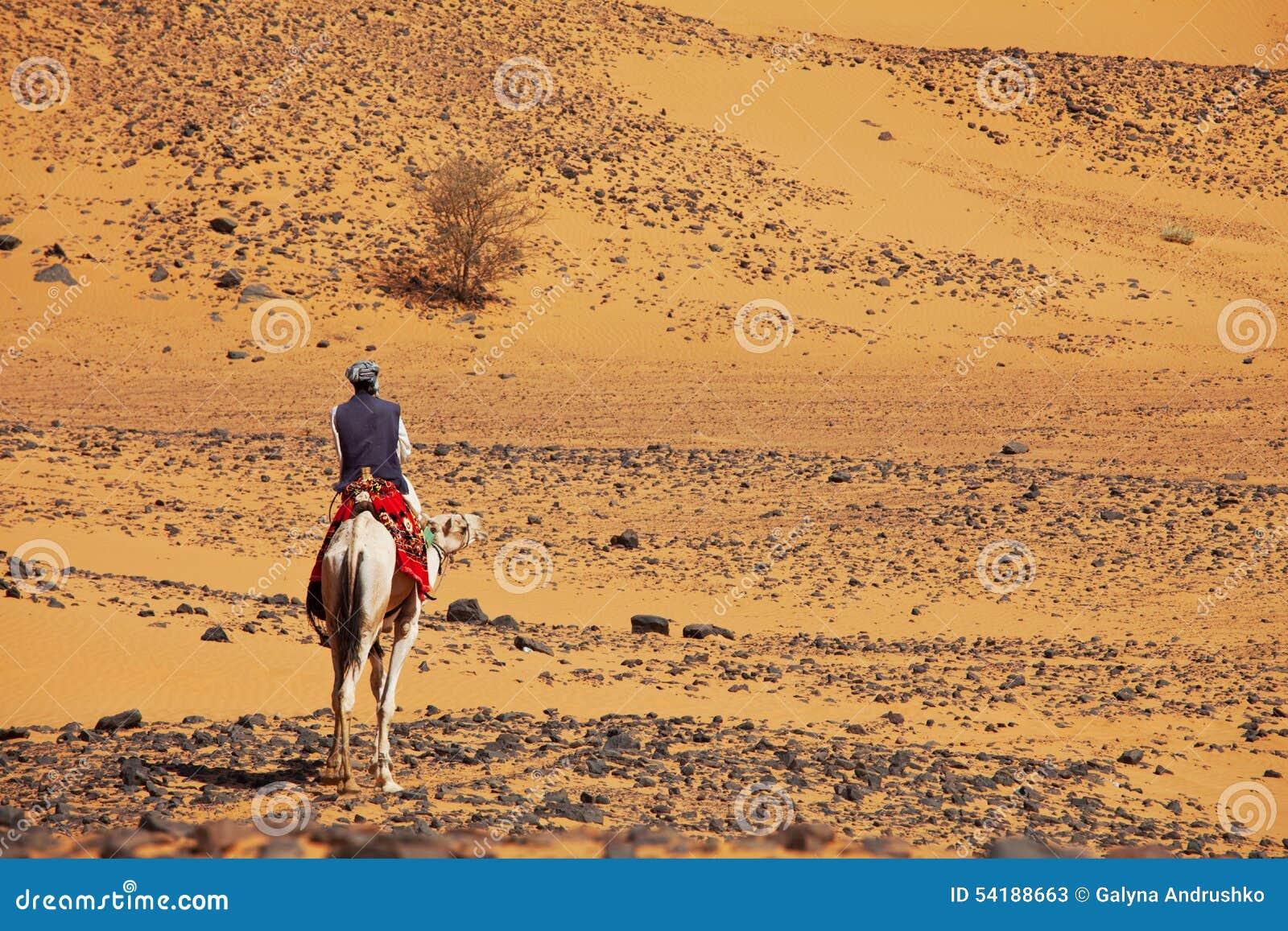 Sudanese camel rider