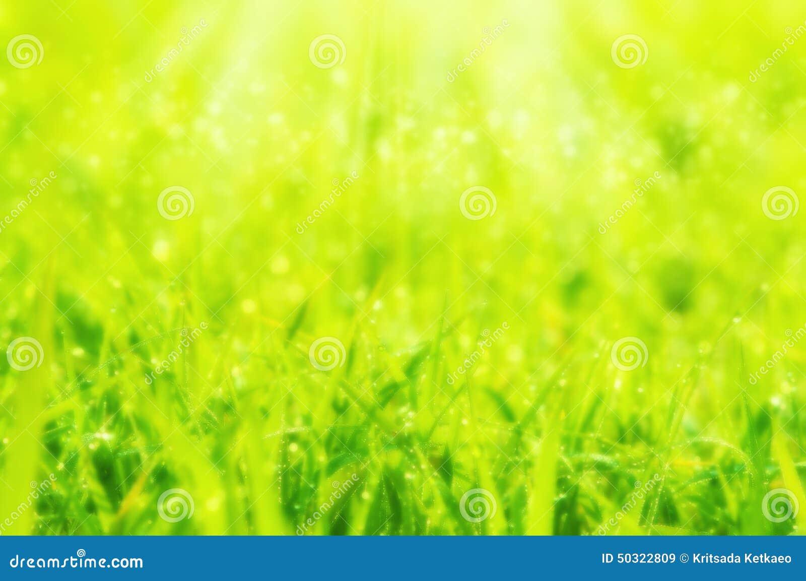 Suddig drömlik mjuk för fokusvår eller abstrakt naturbackg för sommar
