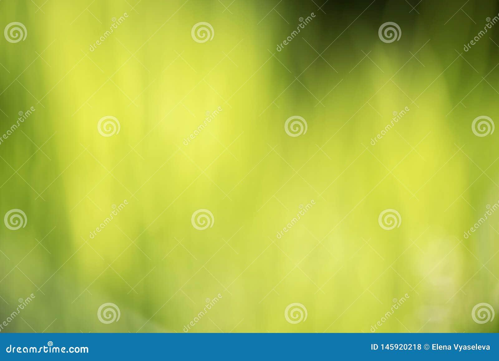Suddig gräsbakgrund för abstrakt grön natur Bokeh bakgrunder