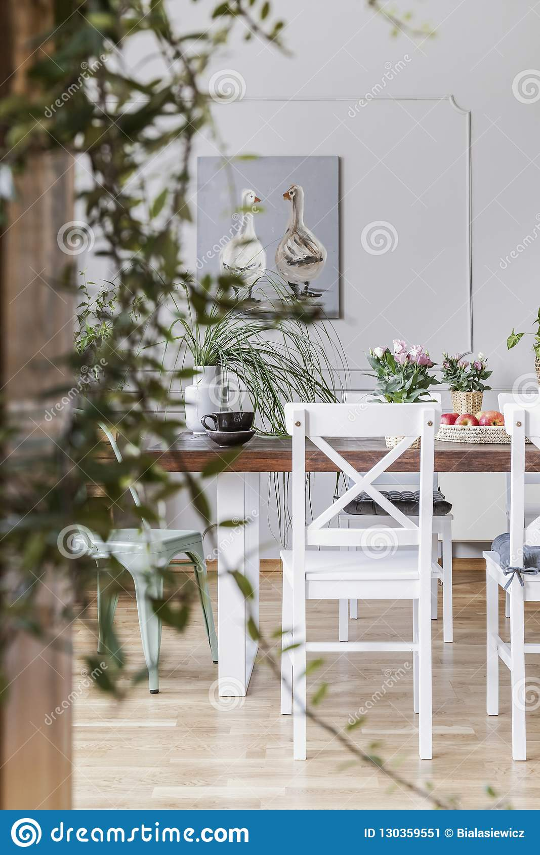 Suddig närbild av en växt med en stol bredvid en äta middag tabell i bakgrunden Verkligt foto av en matsalinre