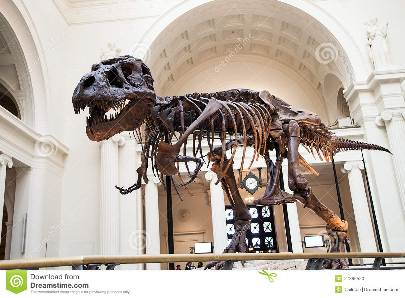 download the field museum - photo #26