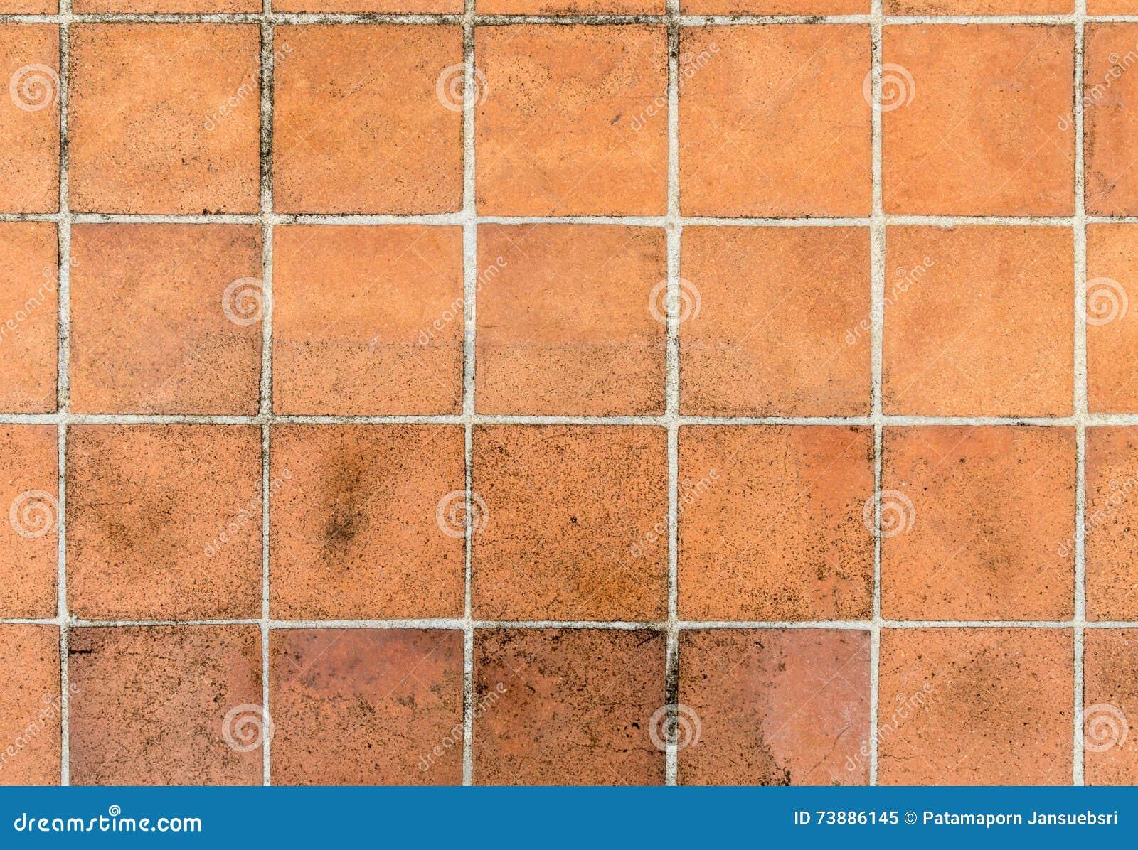 suelo de baldosas de cermica