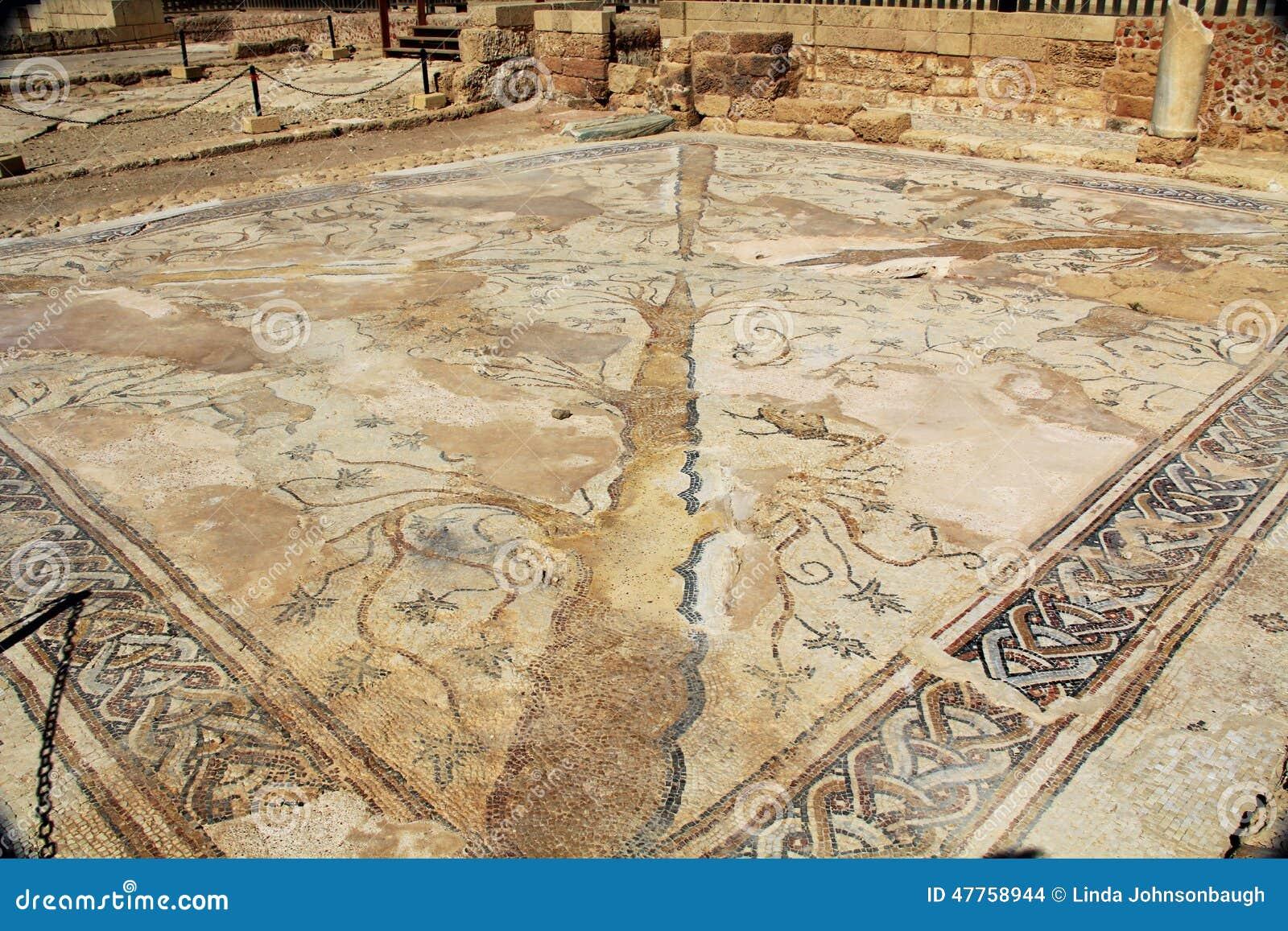 Suelo de baldosas del mosaico en el parque nacional de - Parque suelo ...
