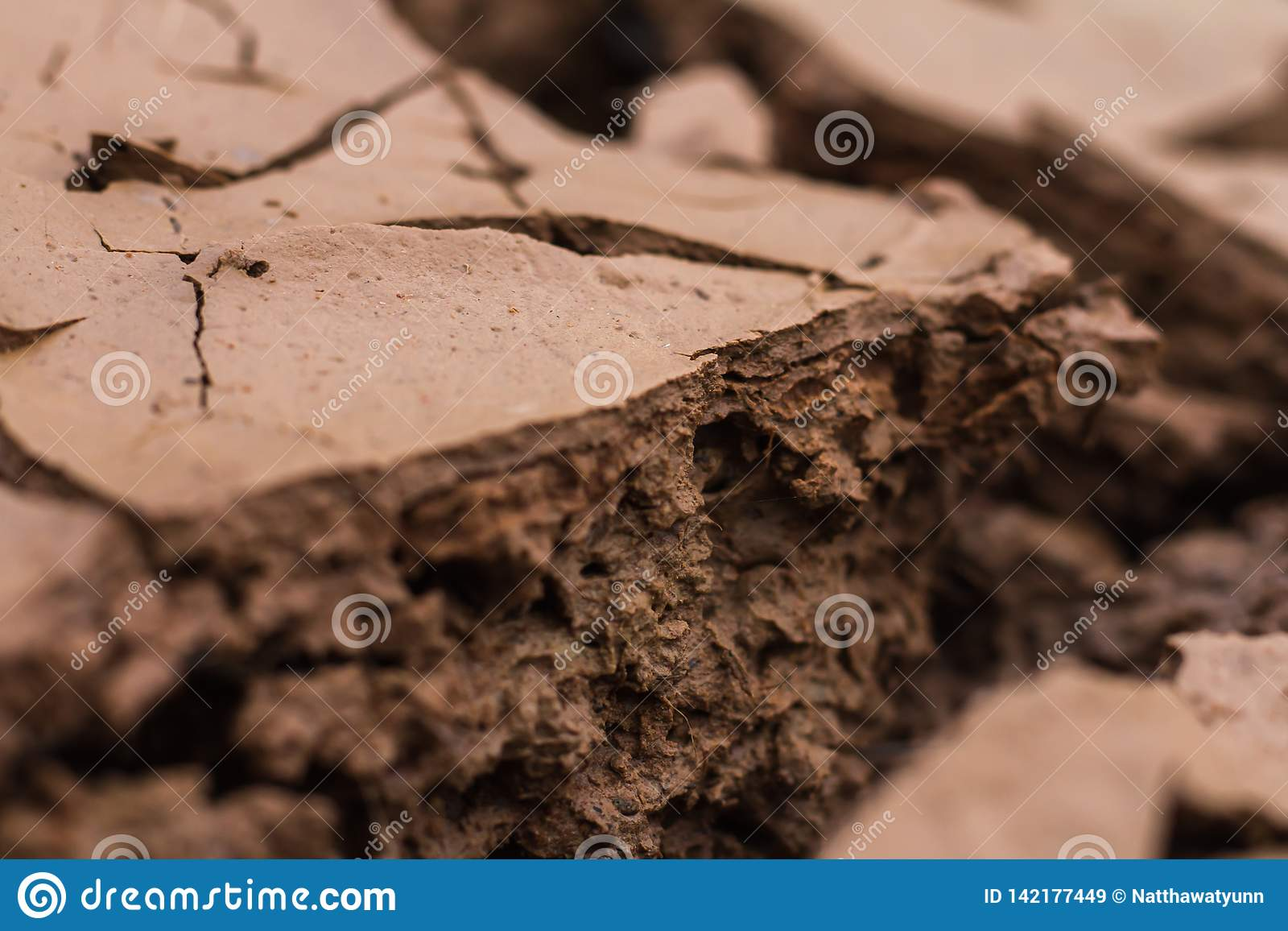 Suelo seco y tierra agrietada