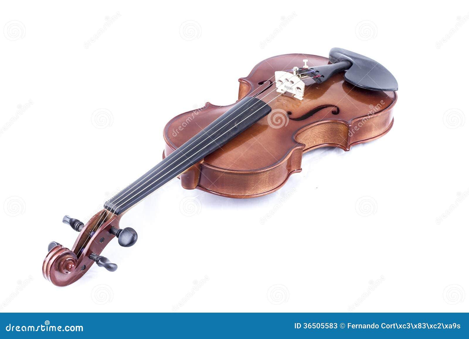 Suene, vista delantera del violín aislada en el blanco, vintage