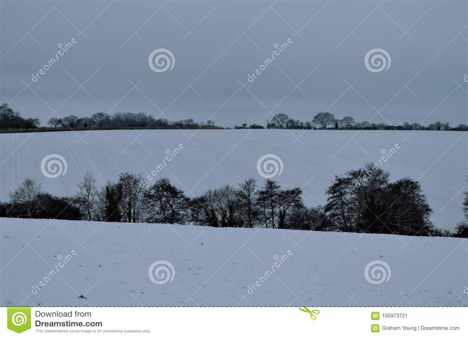 Suffolk snw in Shimpling