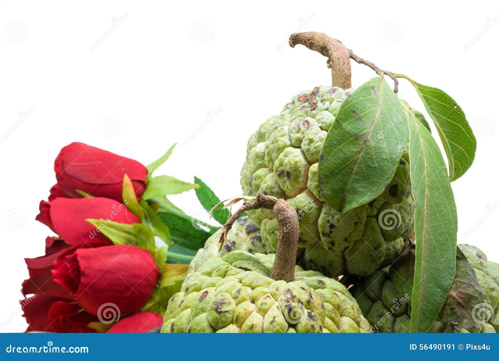 Sugar Apple (corossol, Annona, pomme cannelle)