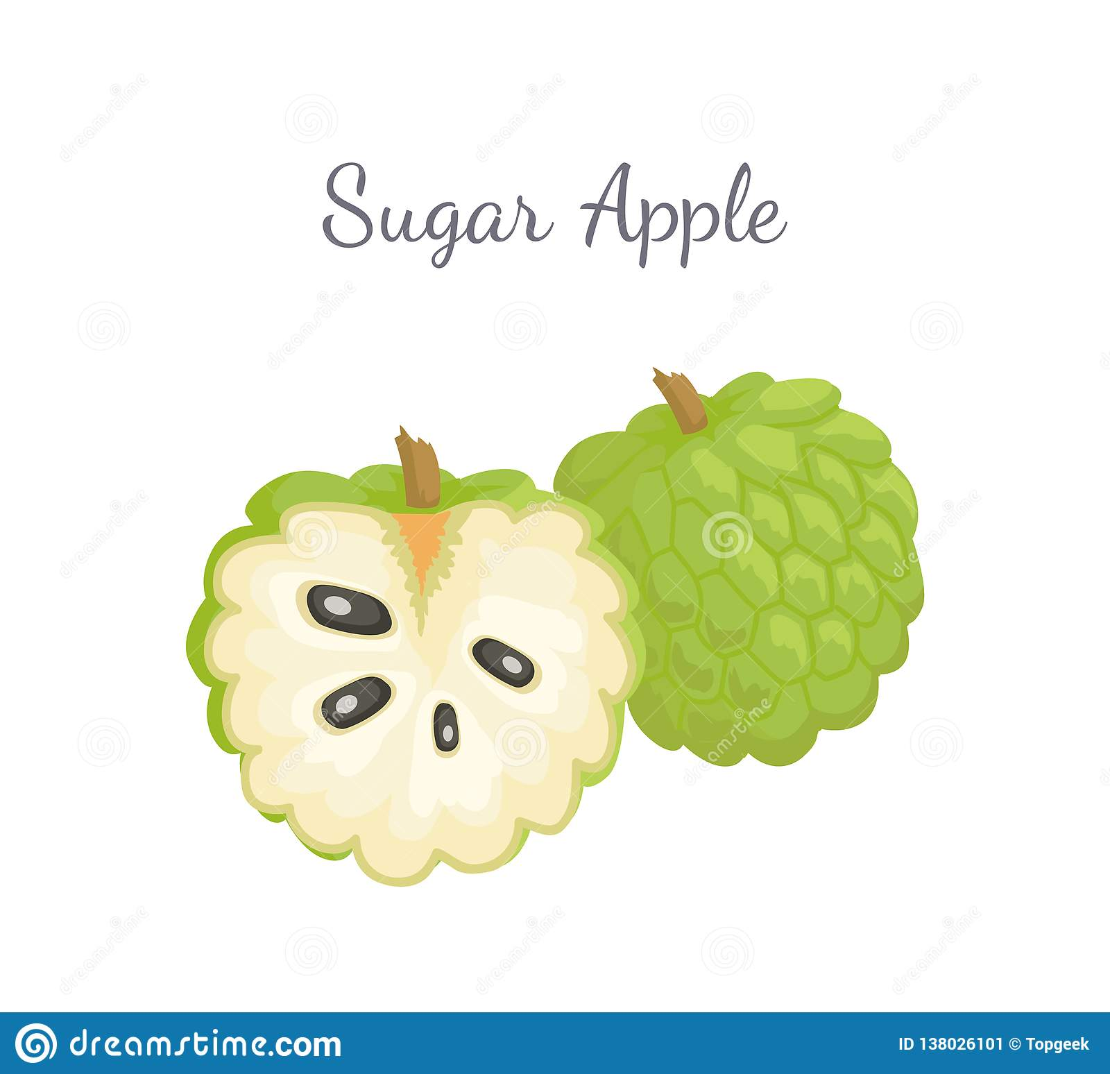 Outline Picture Of Custard Apple