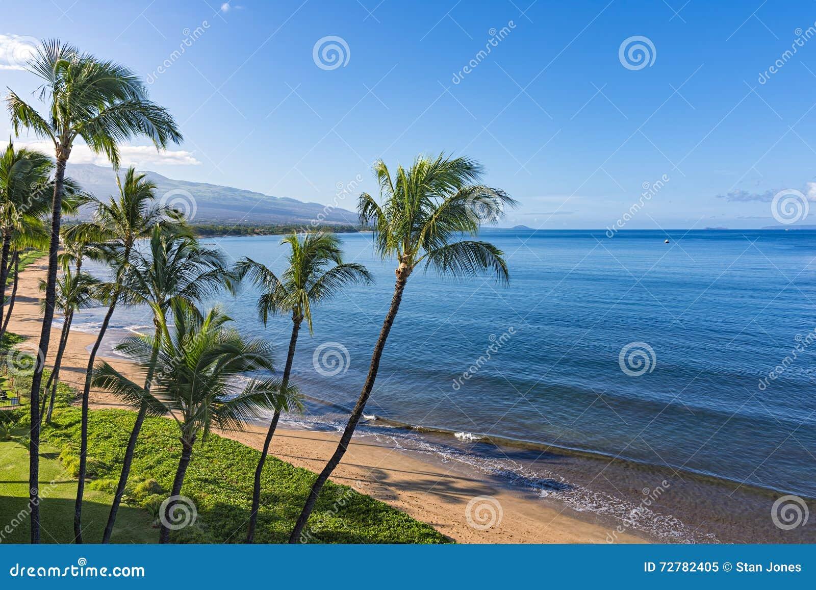 Sugar Beach Kihei Maui Hawaii EUA