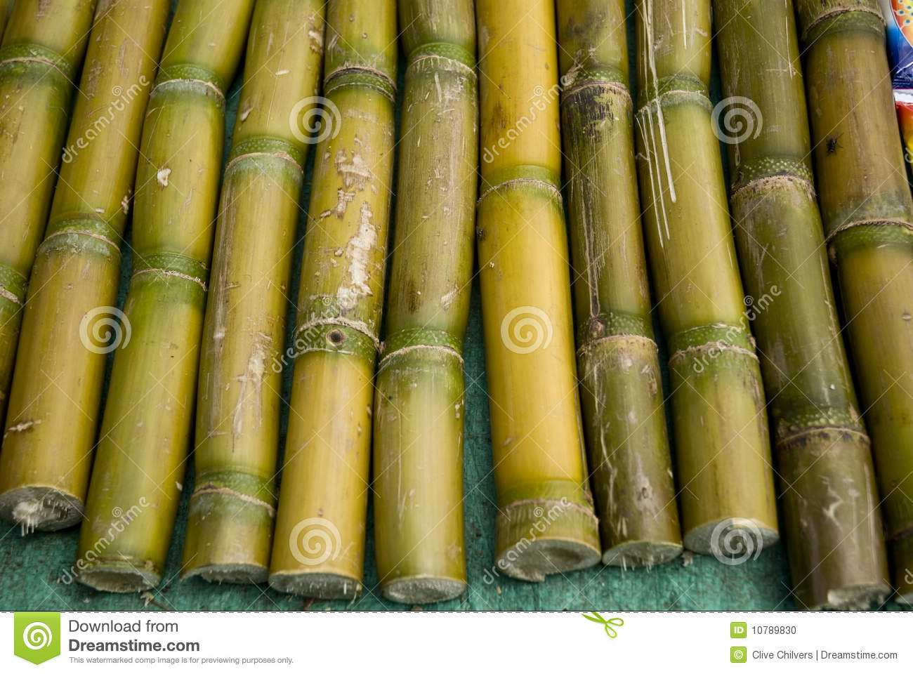 Sugar Cane Sticks For Sale In A Market Stock Photo Image