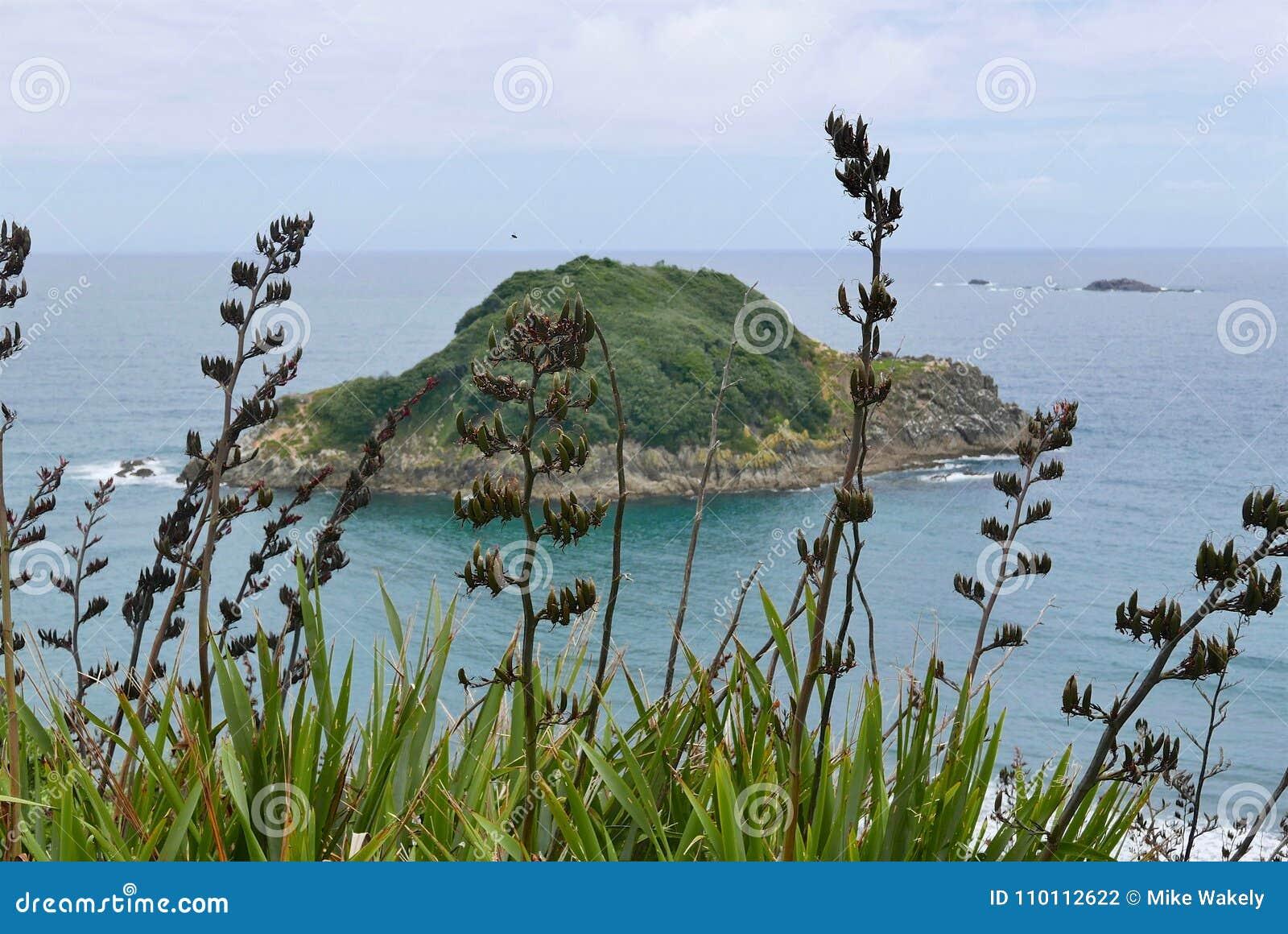 Sugar Loaves Island fora da praia traseira em Plymouth novo