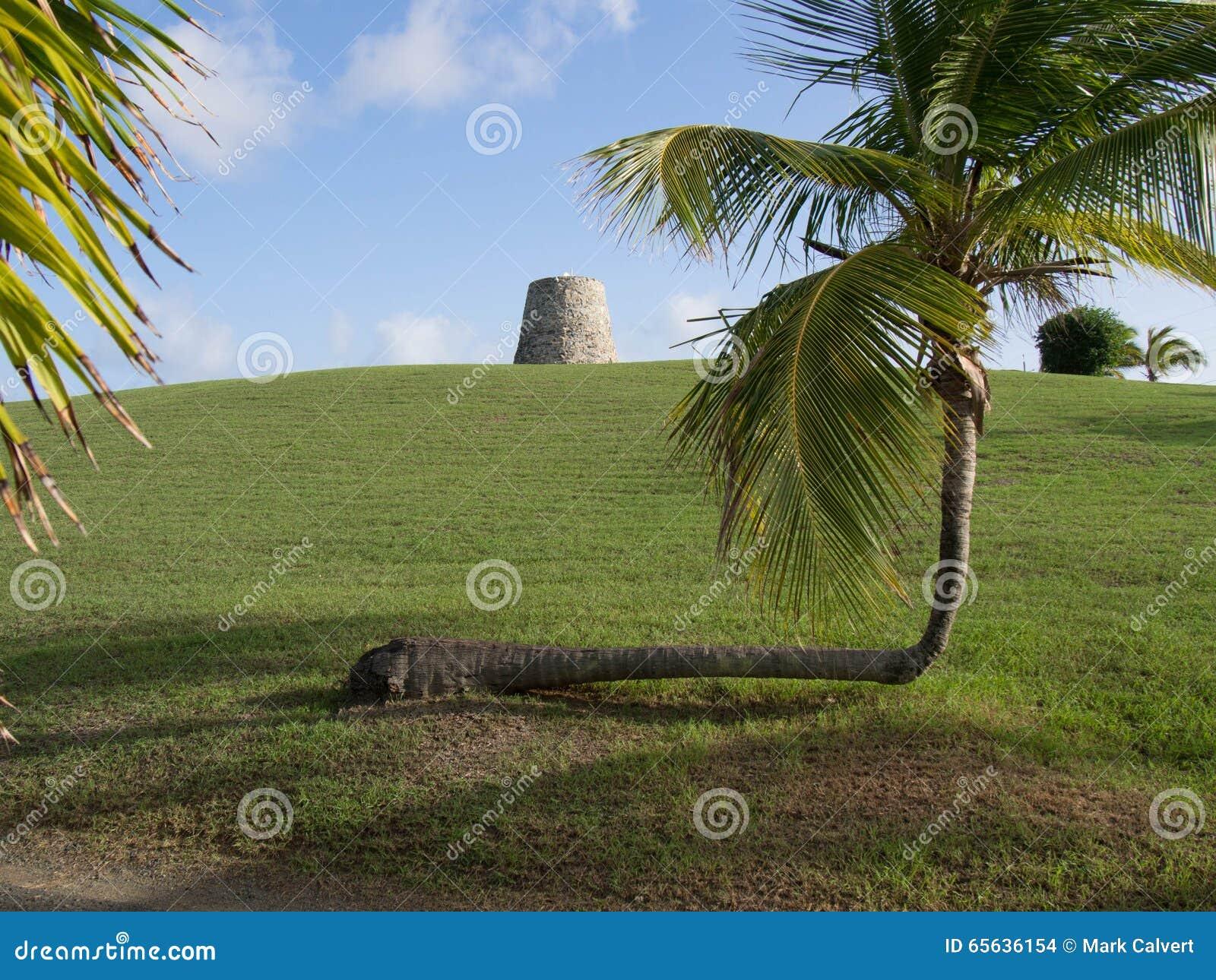 Sugar Mill et un palmier tordu