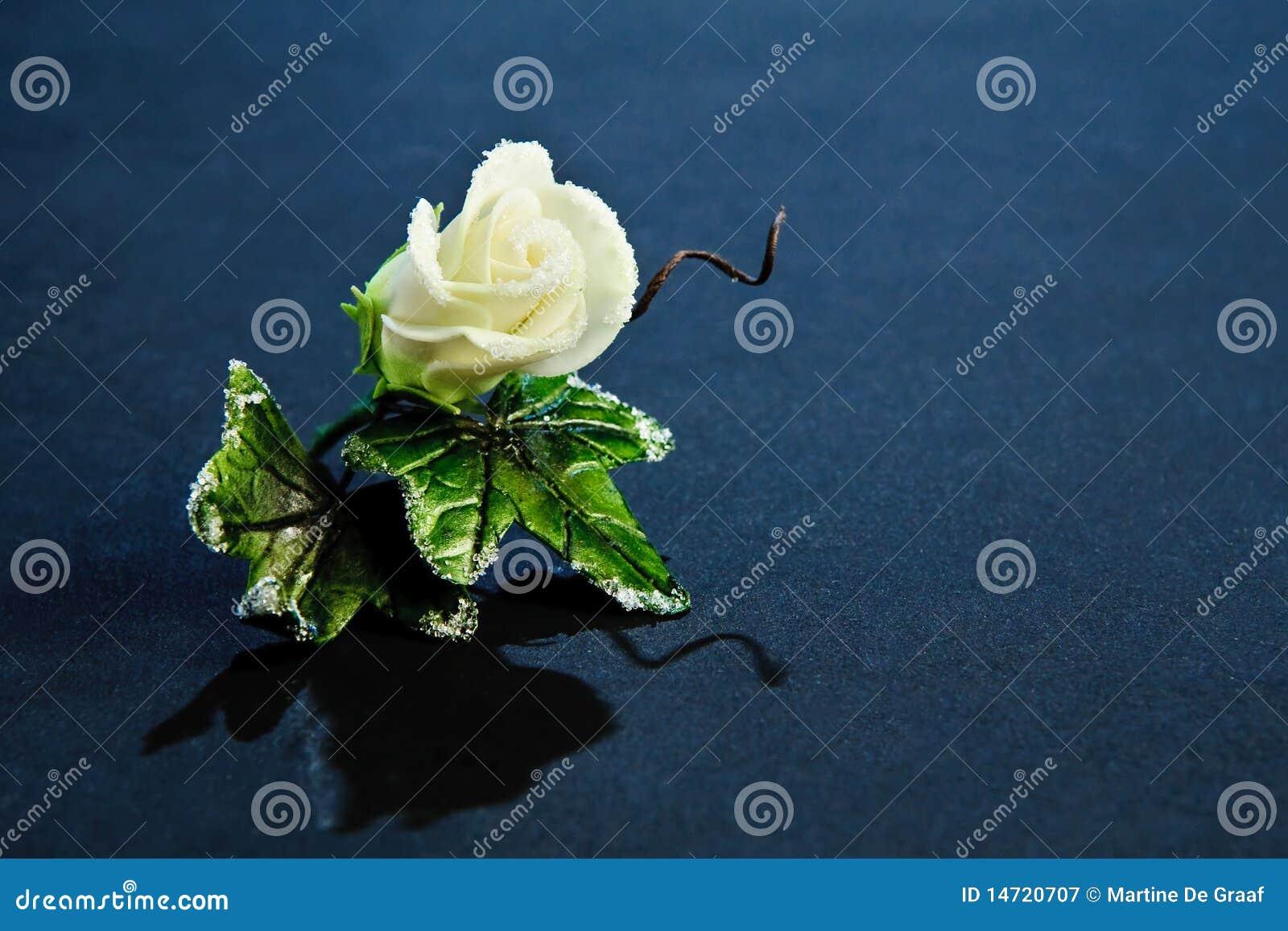 Sugar Rose Corsage