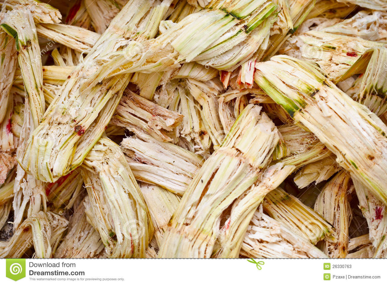 the effectiveness of raw sugarcane bagasse Refereed paper  strategies for monitoring energy consumption in sugarcane processing factories foxon km 1, loubser rc , smith gt 1, davis sb and stolz hnp.