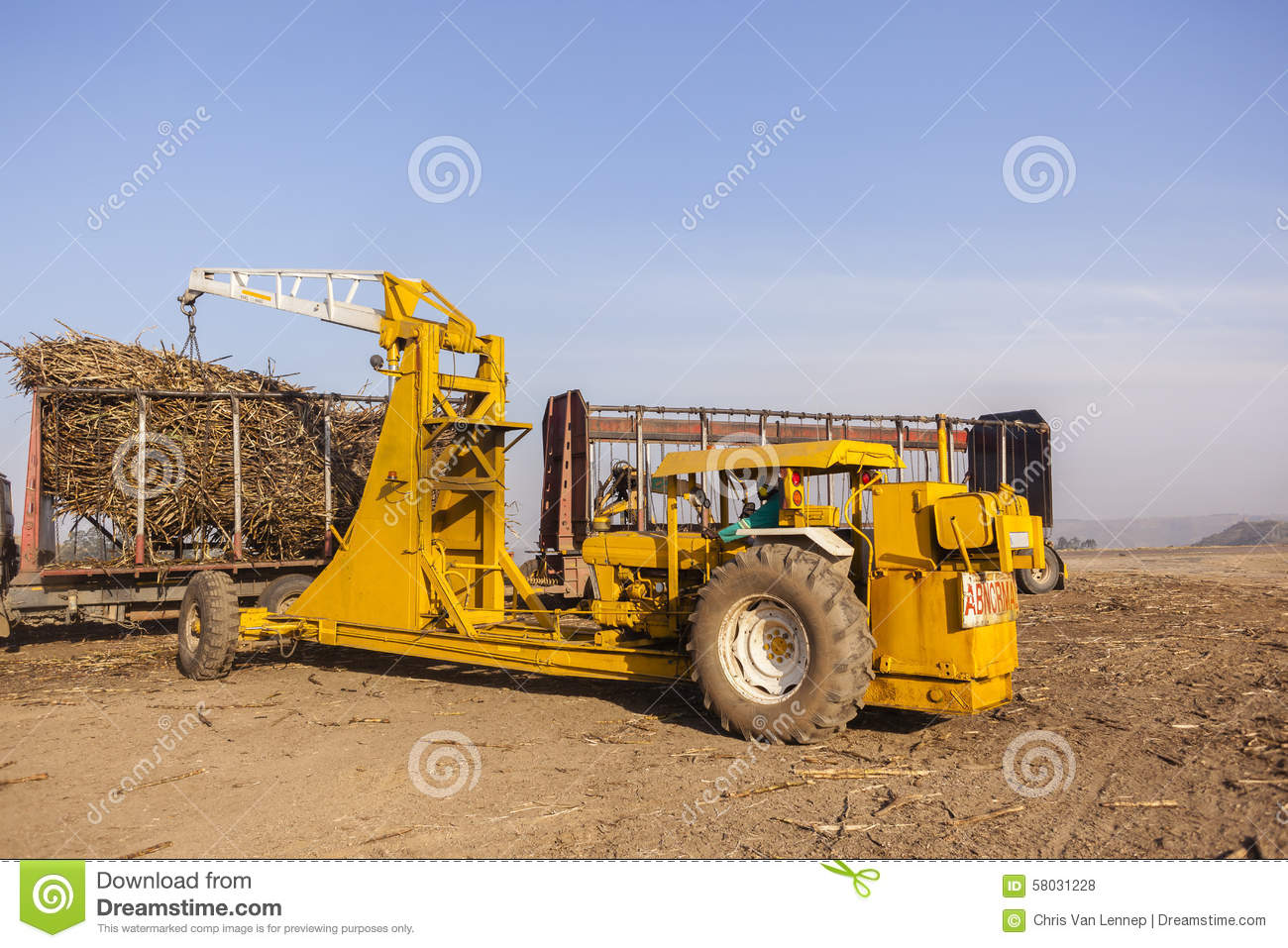 Hydraulic Loading Arms : Sugarcane tractor loading editorial stock photo image