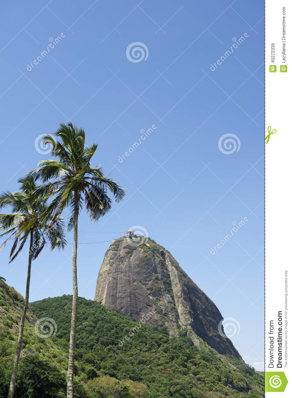 Sugarloaf Mountain Rio Brazil Palm Trees