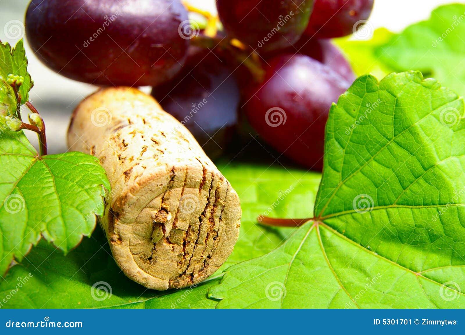 Download Sughero del vino immagine stock. Immagine di sano, faccia - 5301701