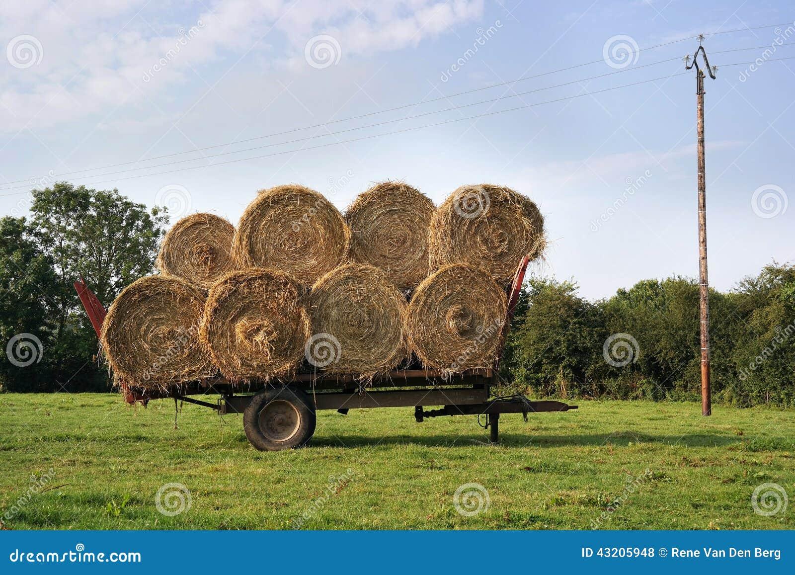 Download Sugrörvagn arkivfoto. Bild av land, påfyllning, skörd - 43205948