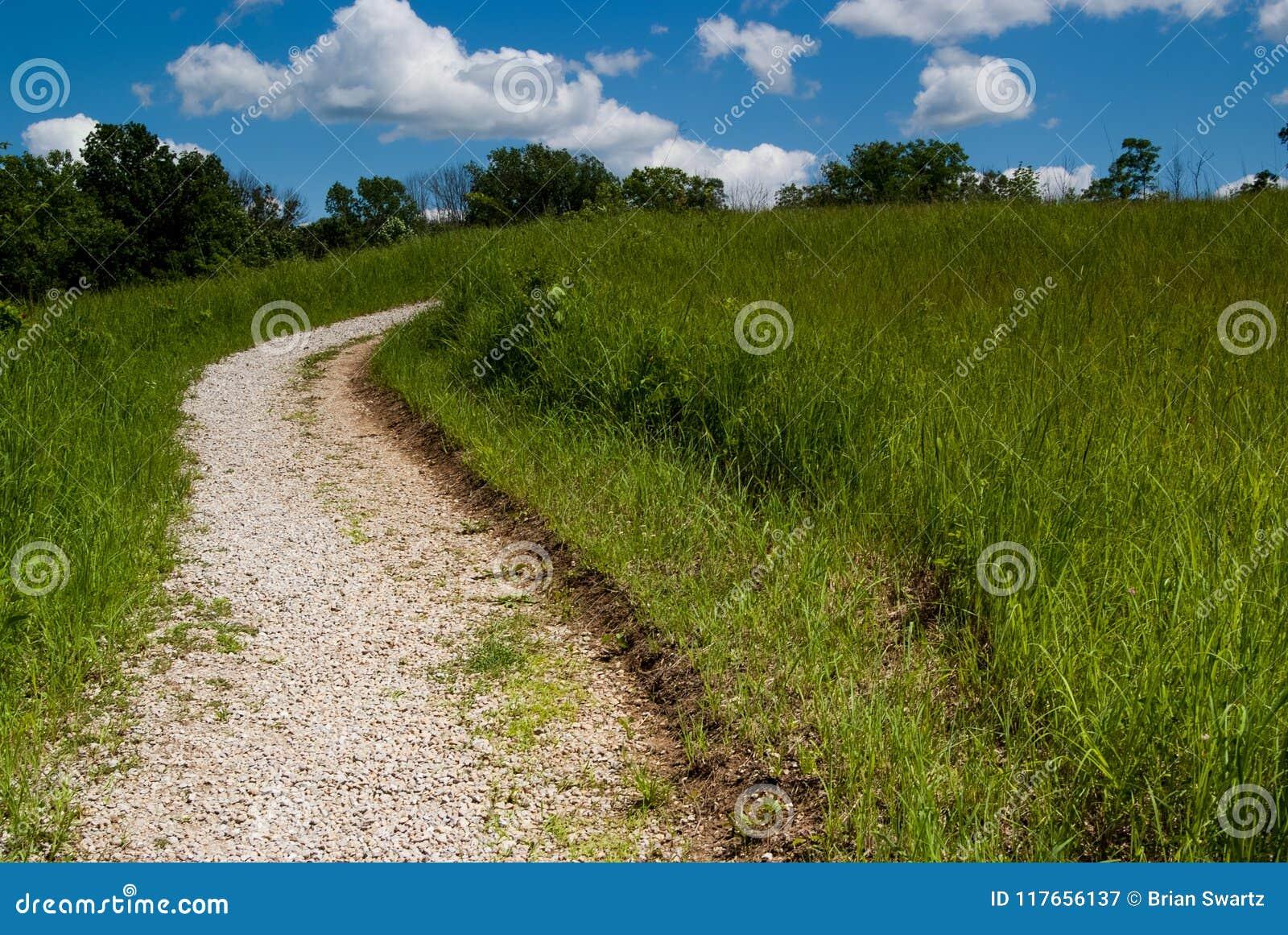 Suivez le chemin 2971