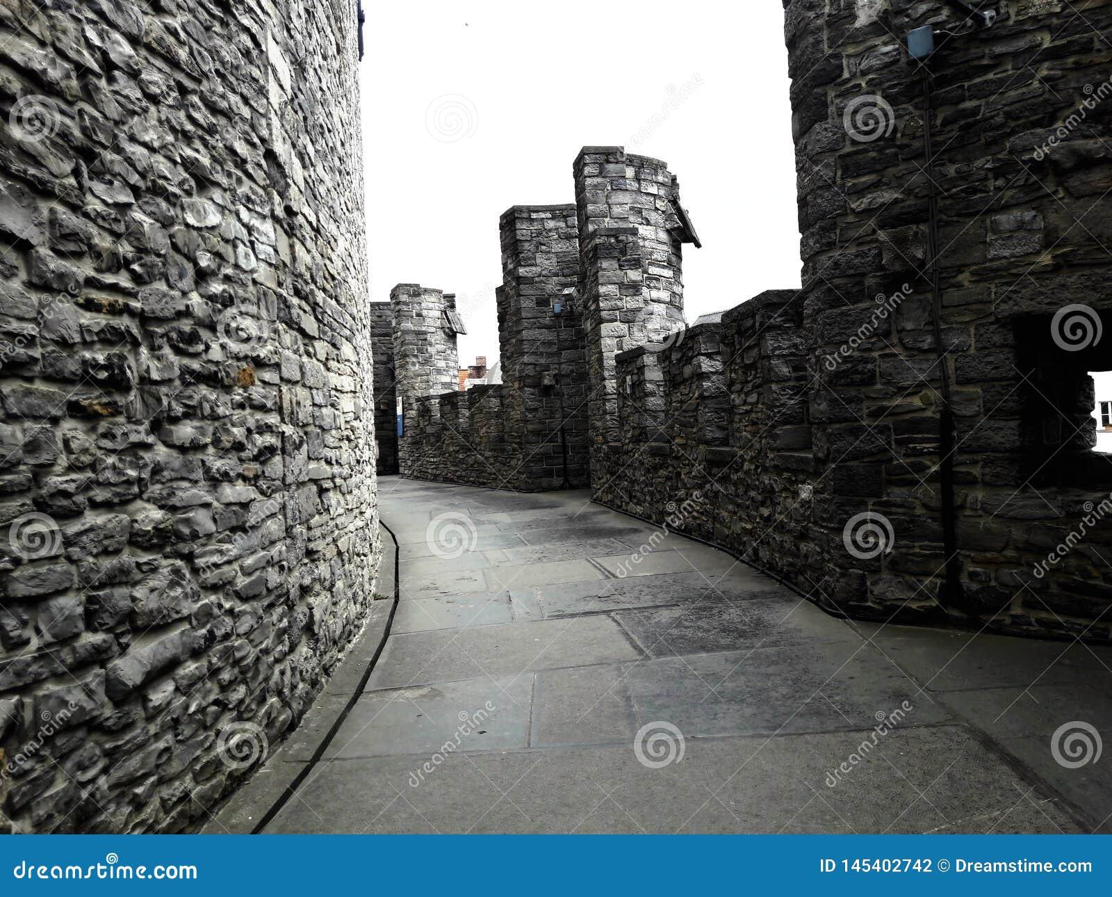 Sul tetto, dentro del castello medievale di Gravensteen del castello dei conteggi il giorno nuvoloso, le pareti di pietra e la ba