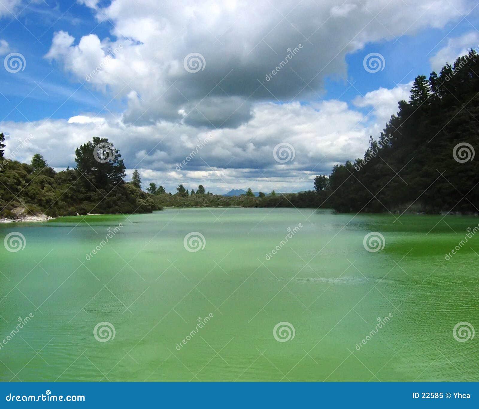 Sulfure el lago en Rotorua, NZ.