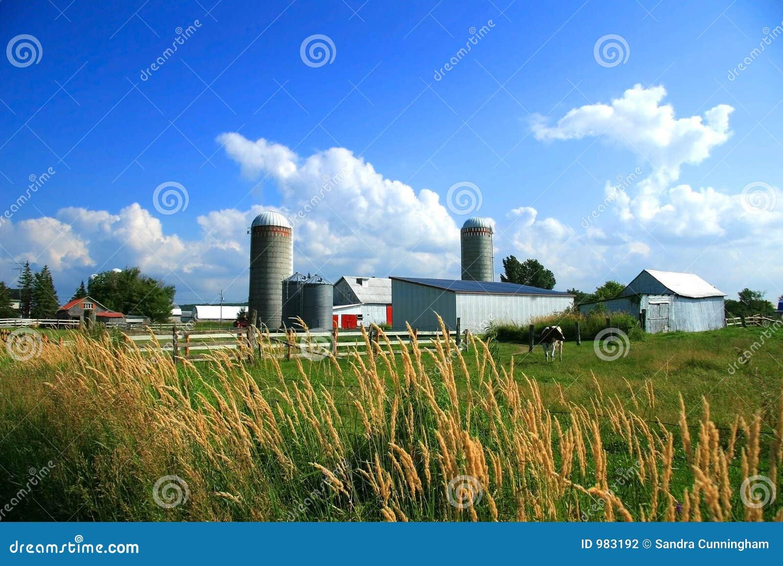 Sull azienda agricola