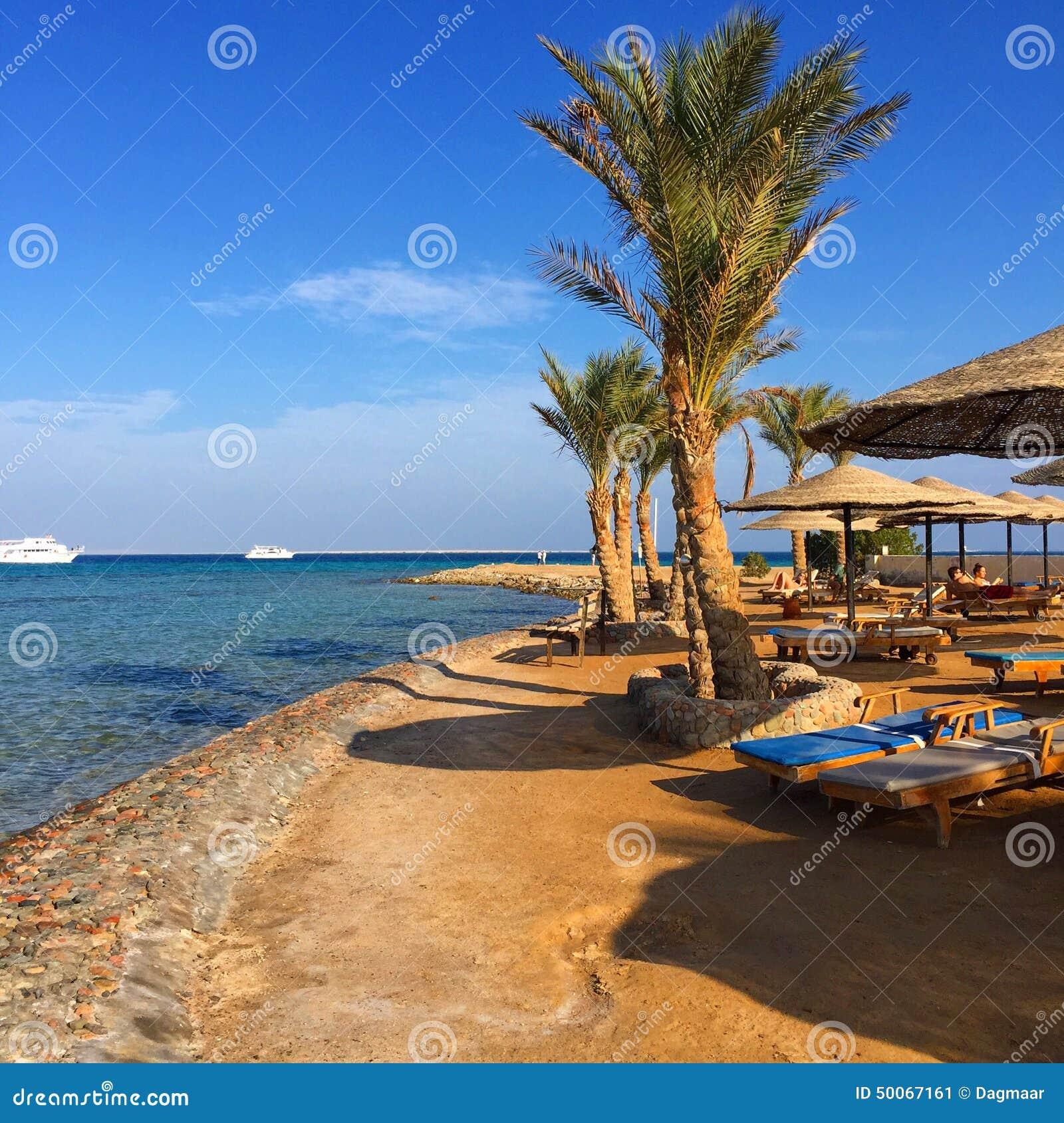 Sulla spiaggia nell Egitto